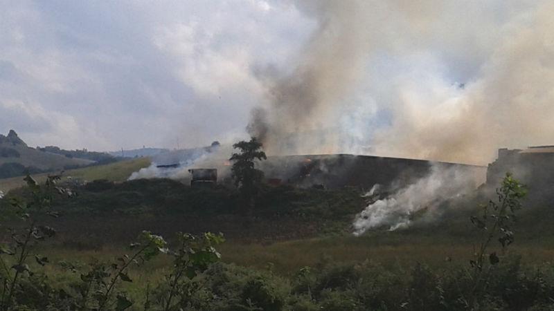 Incendi nei campi di pomodoro, produzione pomodoro Foggia