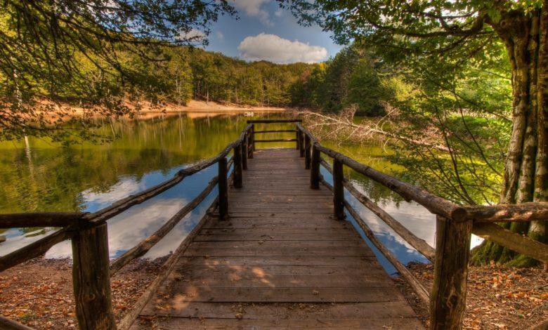 garrgano-ponte-ognissanti