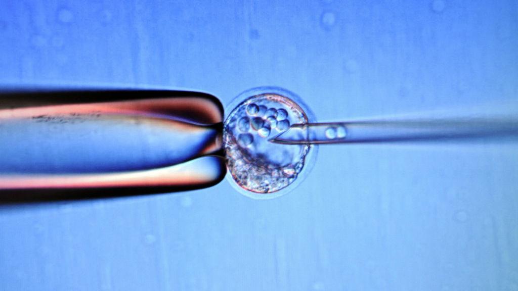 Cells needle