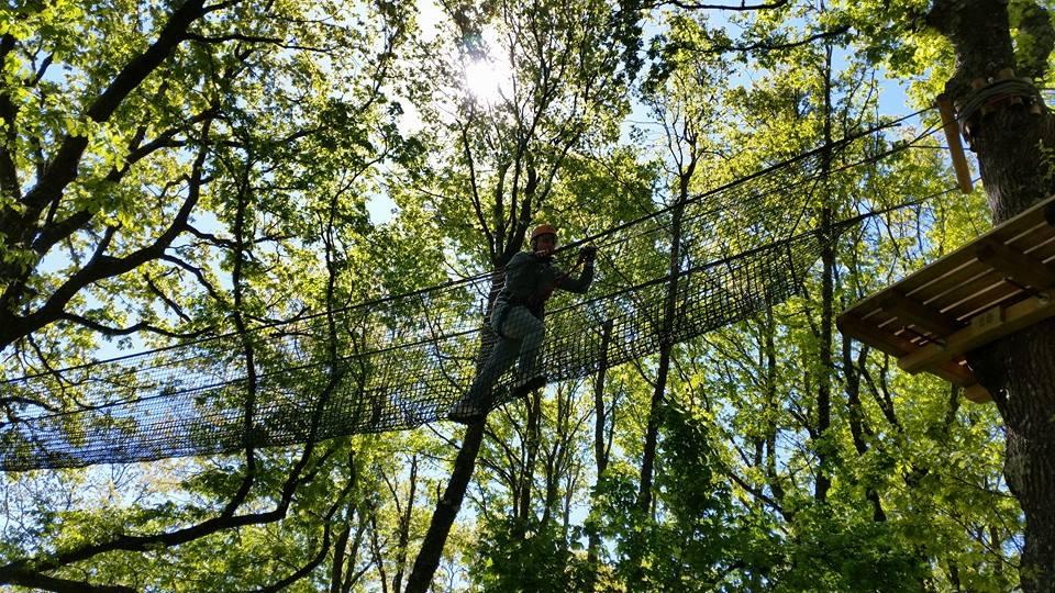 Il Parco Avventura Progetta Il Bed&tree
