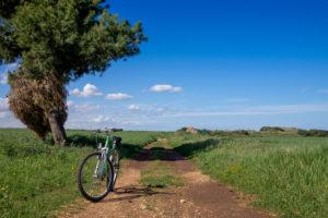 Vivere La Puglia In Bicicletta