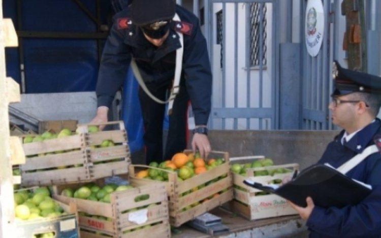 Arrestato Per Furto Di Prodotti Agricoli