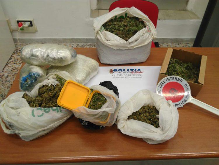 Arrestato Sannicandrese Per Marijuana