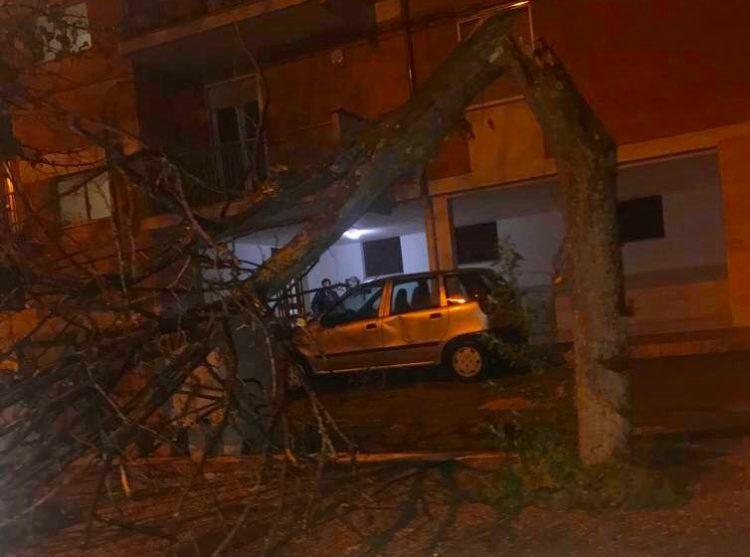 Maltempo Provincia Di Foggia
