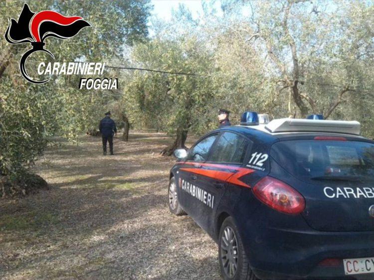 Carabinieri arresti
