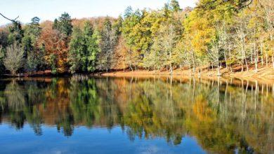 Photo of Cosa fare in autunno in Capitanata: tra boschi, borghi e panorami incantevoli