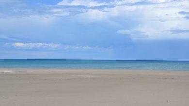 Photo of Zapponeta è ufficialmente Bandiera Blu 2021, riconosciuta come località turistica balneare di eccellenza