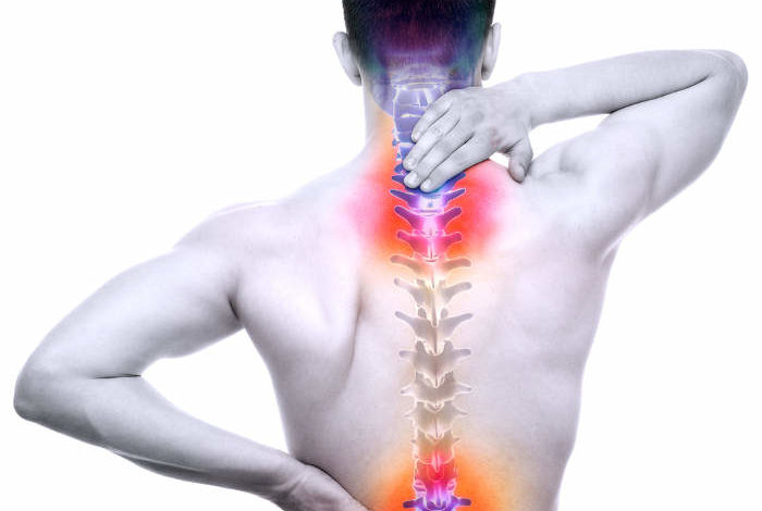 Spine Pain Male Hurt Backbone Isolated On White Real Anatomy Concept