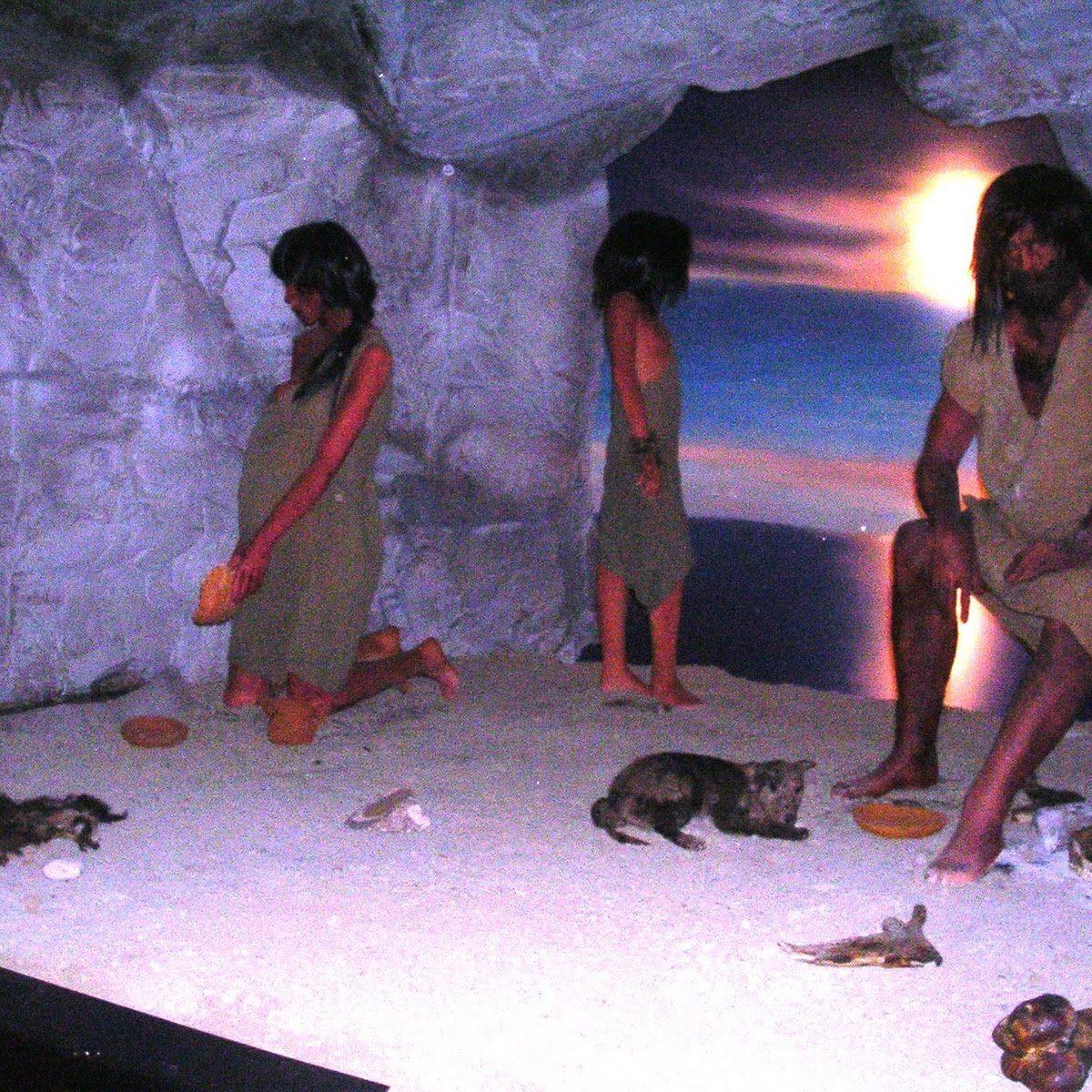 foggia museo di storia naturale