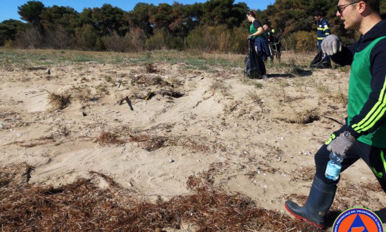ripulita spiaggia siponto