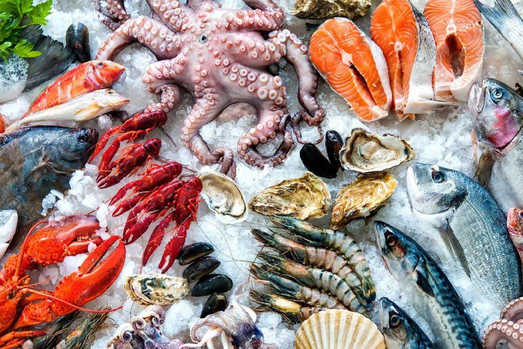 pesce proprietà