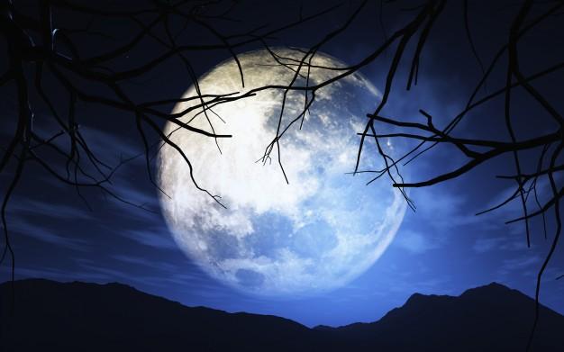 chiaro di luna mostra foggia