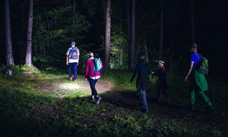 escursione-notturna-bosco-incoronata