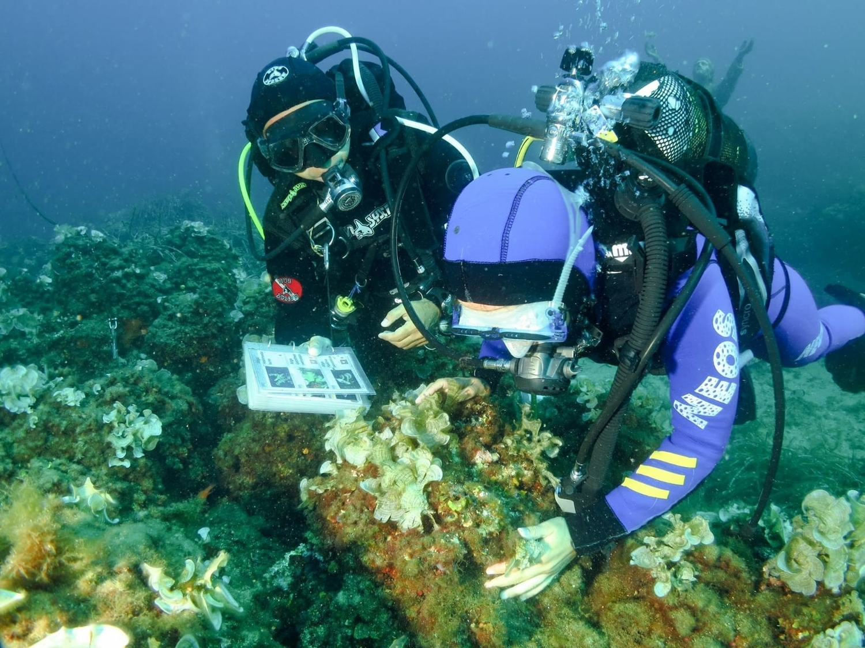 michele-emiliano-isole-tremiti