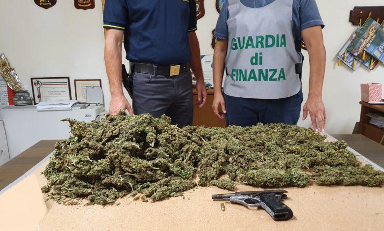 cerignola-cannabis-pistola