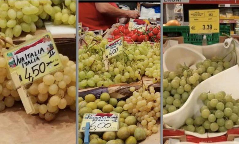 uva-puglia-prezzi