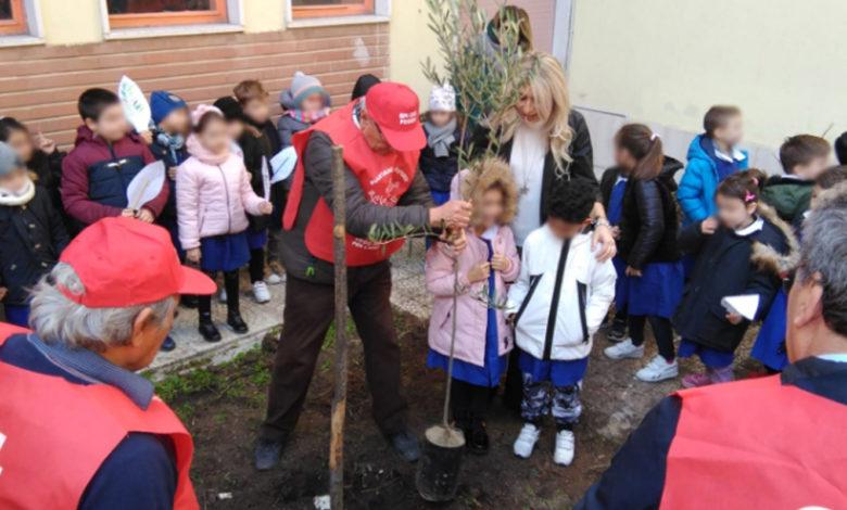 piantati alberi livio tempesta