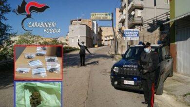 Photo of Blitz antidroga sul Gargano: eroina e cocaina nel motore dell'auto, marijuana nei muri e dentro i calzini