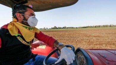 Photo of Covid, Coldiretti Puglia: da inizio emergenza in campagna spesi 12 milioni di euro per le mascherine