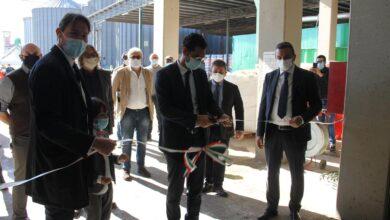Photo of Nel Foggiano il più importante centro di trasformazione della canapa in Italia