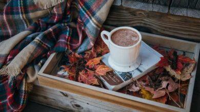 Photo of Bevande al cioccolato ricche di flavonoidi migliorano le capacità cognitive