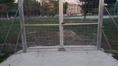 """Photo of Parco San Felice, Cangelli alla consigliera del Pd: """"Per 10 anni avete lasciato le strutture sportive comunali in stato di abbandono"""""""