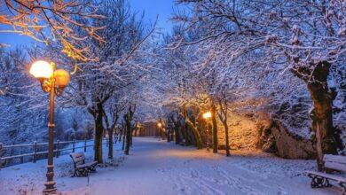 Photo of Nevicate nel Foggiano, la neve bacia il Gargano e i Monti Dauni: le foto sono incantevoli