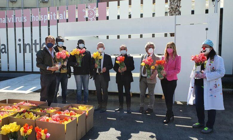 riuniti tulipani