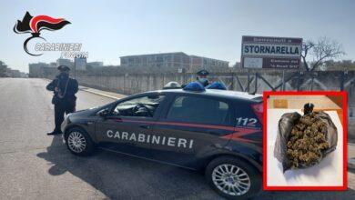 Photo of Controlli antidroga a Stornarella, arrestato un 32enne e segnalati 7 assuntori