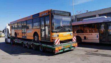"""Photo of 29 bus dal Trentino a Foggia, finora in città ne sono arrivati 15: """"Nuovi e in ottimo stato"""""""