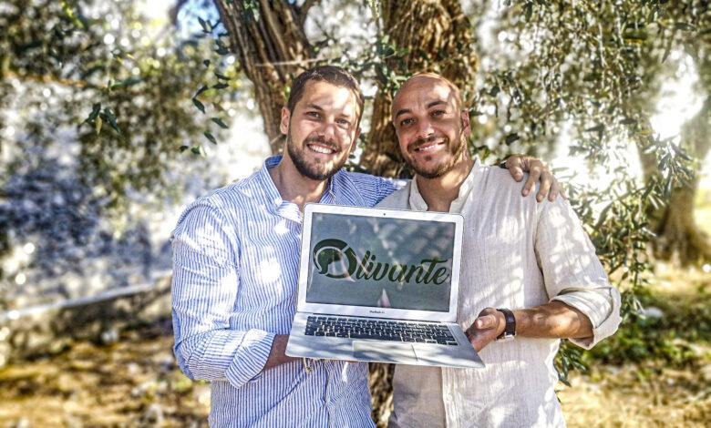 morrone olivante