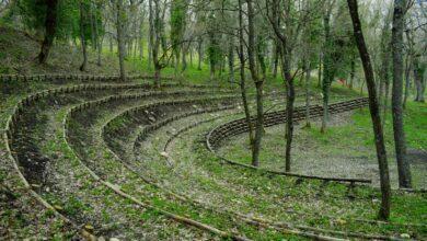 """Photo of A Biccari nascerà il """"Teatro nel Bosco"""": una meravigliosa idea nel cuore più verde dei Monti Dauni"""