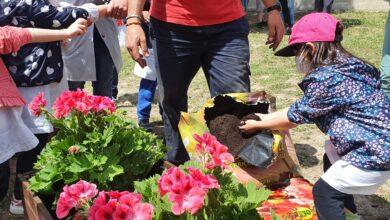 Photo of Manfredonia, pazienti psichiatrici e piccoli studenti trasformano un giardino abbandonato in orto didattico