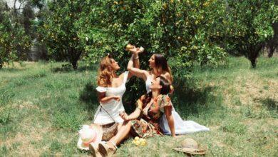 Photo of Ekostè, il brand made in Puglia che realizza cosmetici con gli agrumi del Gargano