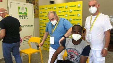 Photo of Coldiretti, al via i vaccini anti-Covid per i braccianti stranieri che lavorano nei campi della provincia di Foggia