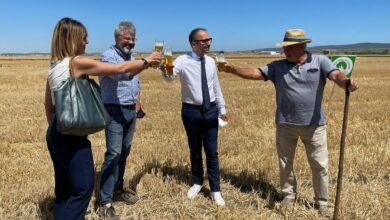 Photo of Fovea, la prima birra prodotta al 100% con grano duro di Capitanata: l'idea vincente di Michele Solimando