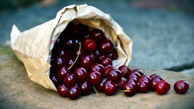Photo of Ciliegie, l'oro rosso della Puglia: ecco tutte le golose tipologie di ciliegie pugliesi