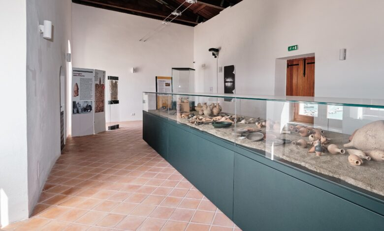 museo vieste