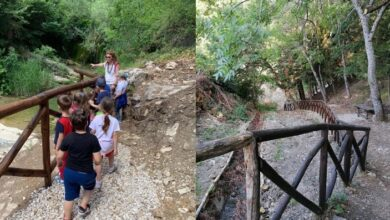 Photo of A Castelluccio Valmaggiore arriva il bosco didattico, un museo naturale a cielo aperto per valorizzare le ricchezze del territorio