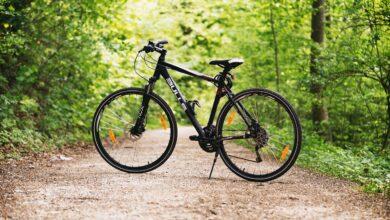 Photo of Gargano da scoprire in bicicletta: un percorso tra mare e foresta per gli amanti del cicloturismo