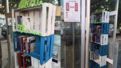 """Photo of A Foggia nasce una Bibliocabina in una vecchia cabina telefonica: """"Un esperimento donato alla comunità"""""""