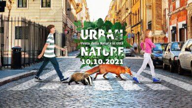 """Photo of Urban Nature 2021, WWF Foggia: """"Vogliamo città con più natura e rispetto del verde urbano"""""""